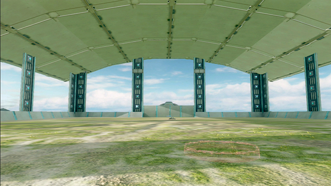 Nakuru Field